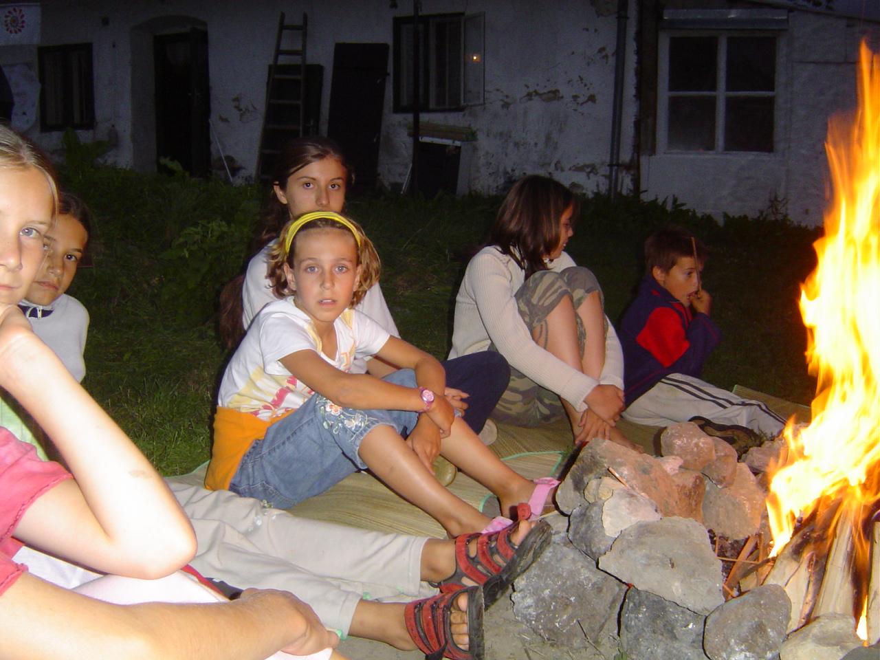 2005 (15)