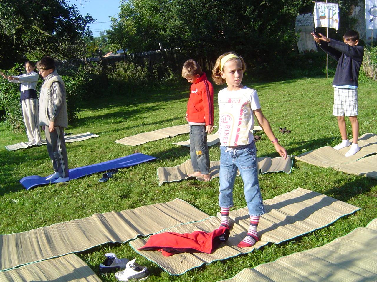 2005 (6)
